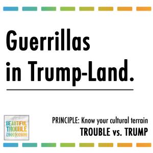 Guerillas in Trump-Land